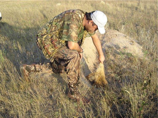 Смысл охоты
