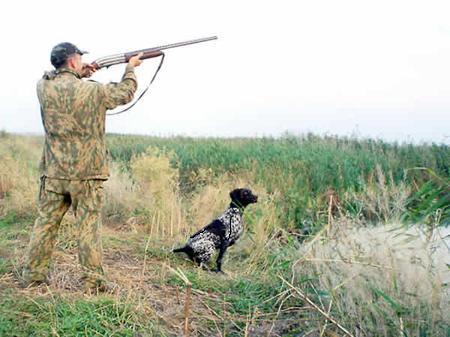 Искусство охоты