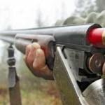 Карабины и винтовки