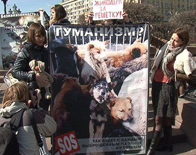 Защитники животных
