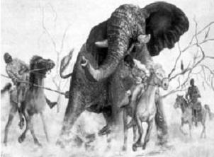 Cлоновья охота