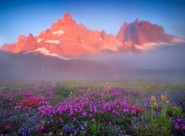 Прекрасная природа
