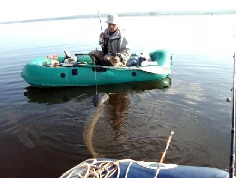 Рыбалка на сома с лодки