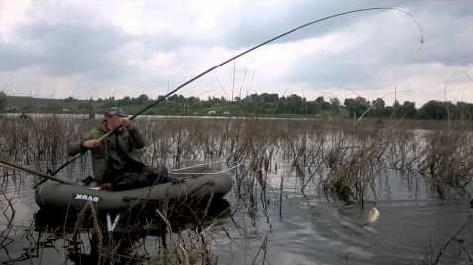 Ловля белого амура (с лодки ПВХ)